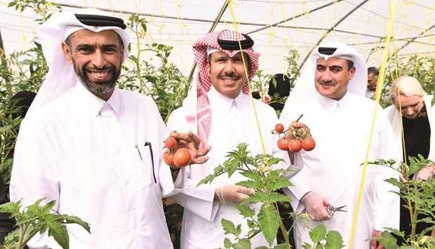 Your Health First organises 'Harvest Day' event