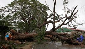 Workers cut branches of an uprooted tree along a road after Typhoon Haima