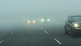 Cars make their way through Salwa Road amid dense fog. PICTURE: Shaji Kayamkulam