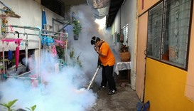 Thailand to test pregnant women in Zika-prone areas