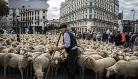 French breeders demonstrate with their animals