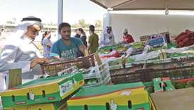 Agricultural Product yards to boost marketing of Qatari produce