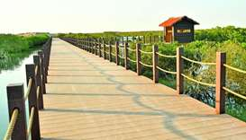 The wooden pedestrian bridge allows visitors to Purple Island have direct access to the beaches by f