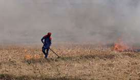 A farmer burns the stubble in a rice field
