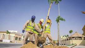 Ashghal tweeted that 45 trees will be planted by the end of October while developing 646sqm of green