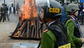 Seized rhinoceros horns are burned as policemen stand guard