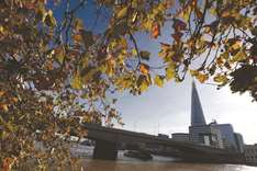Shard achieves full occupancy with 31 diverse businesses