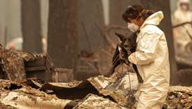 A rescue worker carries Suzie, a cadaver dog, as they search for human remains in Paradise, Californ