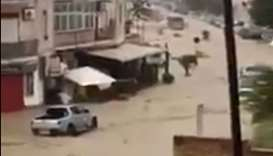 10 dead in Sicily floods