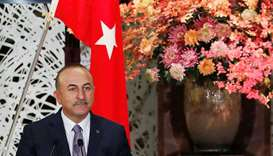 Turkish Foreign Minister Mevlut Cavusoglu attends a news conference