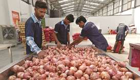 Govt may extend ban on onion export to Feb