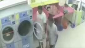 cat killers at the laundrette dryer