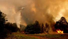A fire bombing helicopter works to contain a bushfire along Old Bar road in Old Bar, New South Wales
