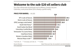 Oil speculators raise bets on falling prices