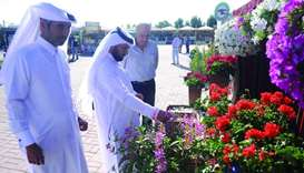 Top quality local flowers go on sale at Al Mazrouah market