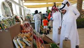Members of the community visit the Torba Farmers Market in Qatar Foundation's Education City.
