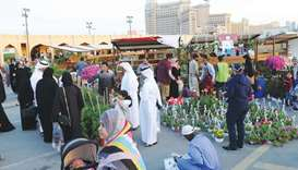 A variety of ornamental plants attract many shoppers.