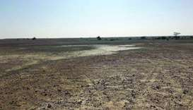 Sewage water not used for greening of desert: ministry