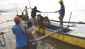 Residents living at the foot of Taal volcano unload their horses from a wooden boat after rescuing t