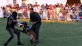 . The dog show comprised of several segments highlighting the skills of the dogs in various activiti