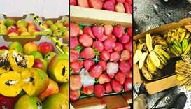 Fruits destroyed by quarantine officers after checks