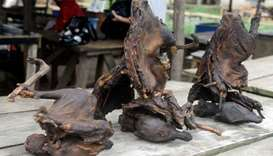 Photo shows dried bushmeat at a market