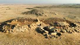 QM makes new discovery in Asaila archaeological site