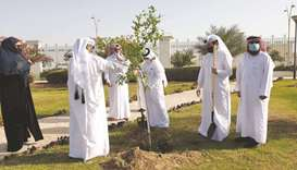 Kahramaa embarks on mission to plant 10,000 trees