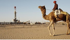 Dreaming of energy security, India pumps desert oil