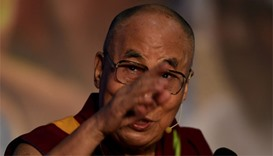Tibetan self-immolates in China: rights group