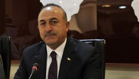 Turkey doing what is required to maintain peace in Idlib - foreign minister