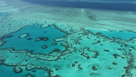 Fourth tourist dies on Great Barrier Reef in weeks