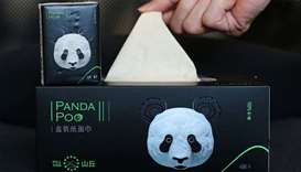Napkins made by panda faeces and food debris is seen in Chengdu in China's southwestern Sichuan prov