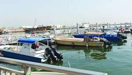 Fish stocks surge along Qatar coast