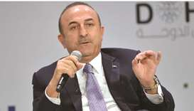 Turkey respects freedom of opinion and expression: FM