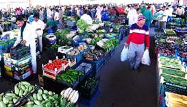 Influx of local produce brings veg prices down