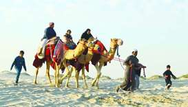 A variety of recreation options including camel rides are available at the Sealine area.