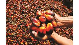 Indonesia files WTO lawsuit against EU over palm oil limits