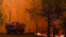 Fire trucks are seen during a bushfire in Werombi, 50 km southwest of Sydney, Australia