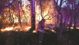 A firefighter conducting back burning measures to secure residential areas from encroaching bushfire