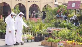 Mahaseel Festival showcases the pick of the Qatar crop