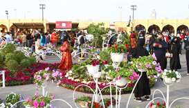 Mahaseel Festival to conclude Saturday, Mahaseel souq from next weekend