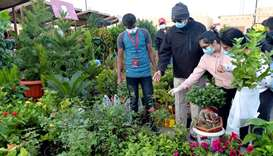 Vegetables, flowers and fruits galore at Mahaseel