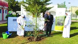 Chinese, Japanese embassies join MME tree planting drive