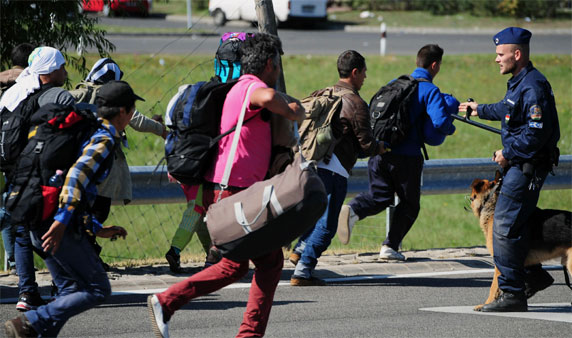 Migrants run across a road after they broke out of at collection point near Roszke village at the Hu
