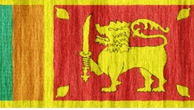 Lanka charter panel to delay report