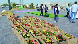 Katara - the Cultural Village has beautified the esplanade with flowers. PICTURE: Joey Aguilar.
