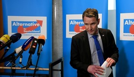 Germany's AfD may expel member for Nazi guilt comment
