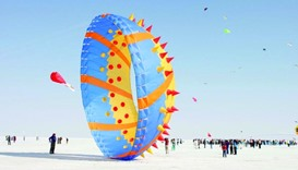 Doha to have a taste of professional kite flying Friday