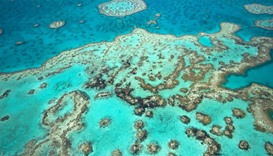 Australia announces 60 million dollar plan to save Great Barrier Reef